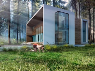 ДОМ В КИЕВЕ Дома в стиле минимализм от ALEXANDER ZHIDKOV ARCHITECT Минимализм