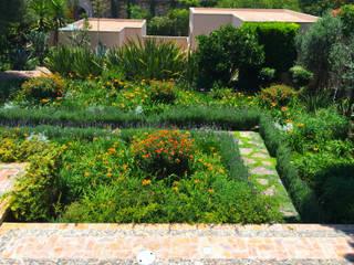 Terra Modern style gardens