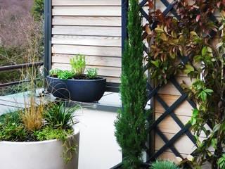 VERT PRINTEMPS | Une terrasse à l'abris des regards Jardin minimaliste par Skéa Designer Minimaliste