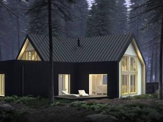 KOZIEJ ARCHITEKCI Maisons modernes Bois