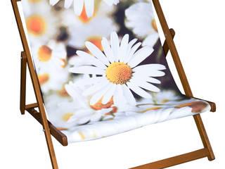 Designer Deckchairs:   by Eyes Wide Digital Ltd