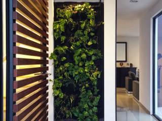 Casa Esmeralda Pasillos, vestíbulos y escaleras minimalistas de Región 4 Arquitectura Minimalista