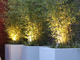 Modern Garden by Hoveniersbedrijf Guy Wolfs Modern