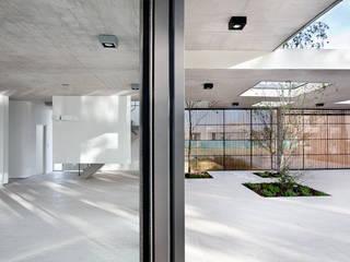 Modern garden by VDV ARQ Modern