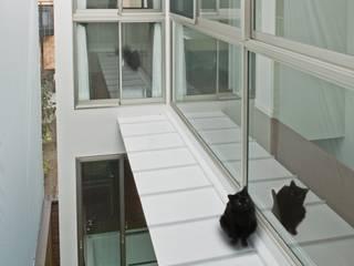 中庭上部 キャットウォーク: 有限会社Y設計室が手掛けたベランダです。