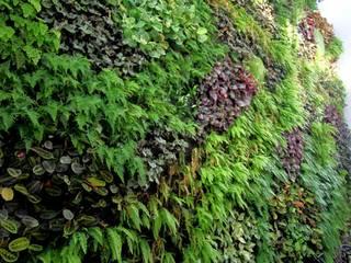 Nowoczesny ogród od SingularGreen Nowoczesny