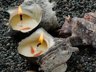 [물품소] FISHCANDLE 소라캔들: 물고기를 품은 소이캔들의