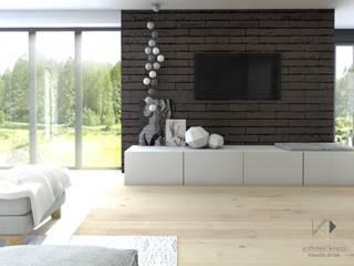 Architekt wnętrz Klaudia Pniak Modern living room