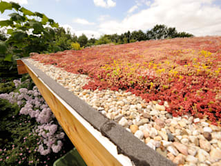 Jardins  por Tuindesign & Styling Ves Reynders