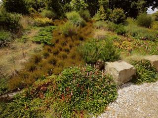 Moderner Garten von Tuindesign & Styling Ves Reynders Modern