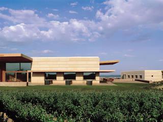 Campo Viejo Winery - Juan Alcorta Winery Ignacio Quemada Arquitectos Винні підвали Камінь