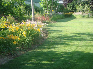 Matiteverdi's garden Giardino moderno di matiteverdi Moderno