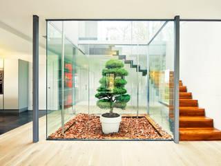 rdl arquitectura Scandinavian style corridor, hallway& stairs