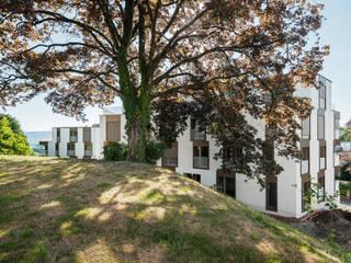 Modern Windows and Doors by Schneider Gmür Architekten Modern