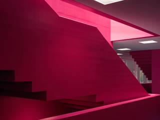 Schule für cerebral gelähmte Kinder Winterthur Moderne Schulen von Schneider Gmür Architekten Modern