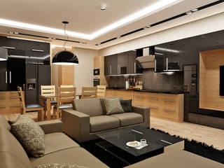 Rash_studio Modern living room