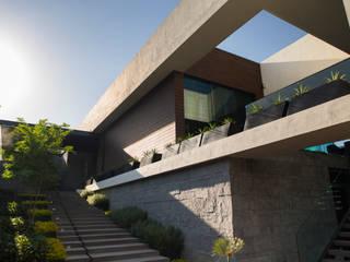 Jardin moderne par HARARI LANDSCAPE Moderne