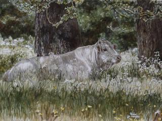 Piemontese stier in de schaduw van Wim Romijn Art Landelijk