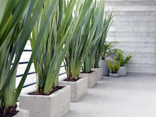 EN.CONCRETO HouseholdPlants & accessories