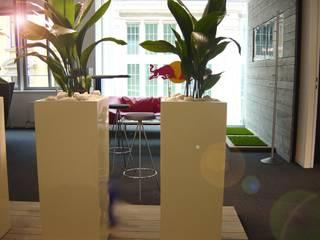 Haedi-Flor Meisterbetrieb Interior landscaping Green