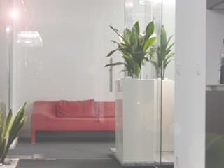 Haedi-Flor Meisterbetrieb Interior landscaping White