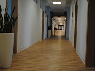 Haedi-Flor Meisterbetrieb Interior landscaping
