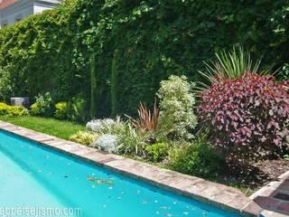 Tropical style garden by abpaisajismo Tropical