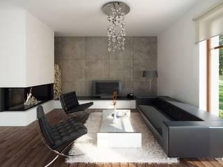 Livings modernos: Ideas, imágenes y decoración de Biuro Projektów MTM Styl - domywstylu.pl Moderno