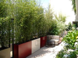 modern Garden by ATELIER SO GREEN