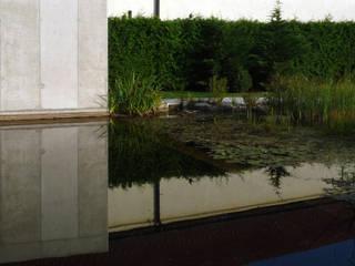 Waterhouse Minimalistische Pools von Architekt Zoran Bodrozic Minimalistisch