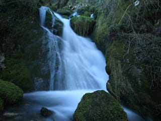 Fotografia de la Naturaleza. de Bilbaophotocadeau. Moderno