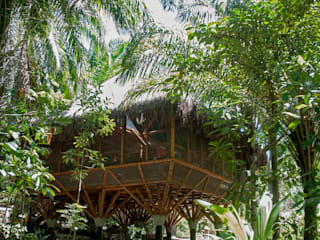 Study/office by IR arquitectura, Tropical