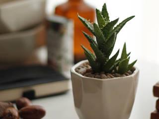 tối giản  theo Kentia Decosustentable, Tối giản