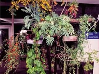 Jardines, exterior e interior:  de estilo  de FLORIDEA