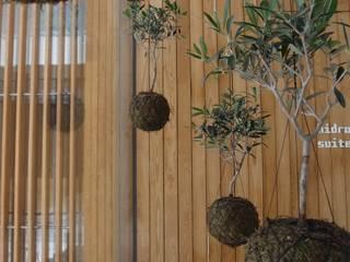 庭院 by fiu jardins, lda., 現代風