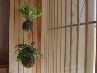 Jardin moderne par fiu jardins, lda. Moderne
