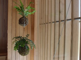 Modern style gardens by fiu jardins, lda. Modern