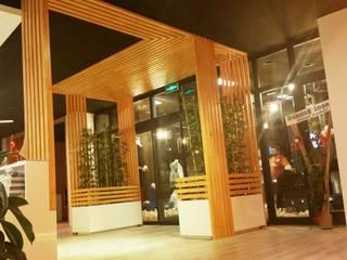 Tropical style windows & doors by ÖZ-İŞ İNŞAAT İÇ MİMARLIK HAZIR MUTFAK Tropical