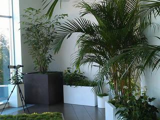 Projekty,  Ogród zimowy zaprojektowane przez WGWRoofs - Мастерская зеленых стен и крыш