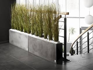 Betonowe donice Nowoczesny korytarz, przedpokój i schody od Modern Line Nowoczesny