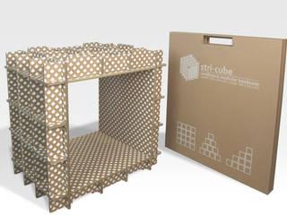 1 module stri-cube et son étui:  de style  par Dany Gilles