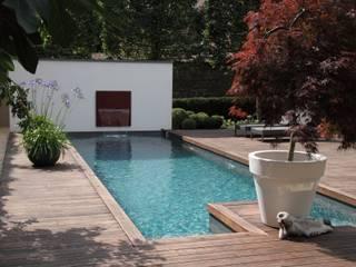 Gestuckte muur met waterspel: modern Zwembad door Guy Wolfs Hoveniersbedrijf