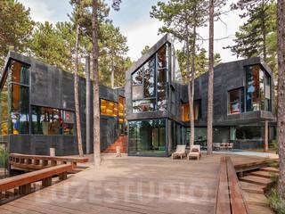 Casa Levene Casas de estilo industrial de Luzestudio - Fotografía de arquitectura e interiores Industrial
