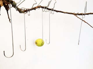 Wire Frame Bird Feeders: modern  by Green & Blue, Modern