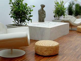 Jardins de Inverno minimalistas por homify Minimalista