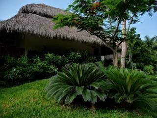 Villa in Nuevo Vallarta de Tropical America landscaping Moderno