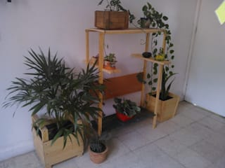 Departamento Seis HouseholdPlants & accessories Wood