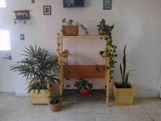 Departamento Seis HouseholdPlants & accessories خشب