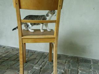 Stuhl 30er/40er Jahre:   von maduett,