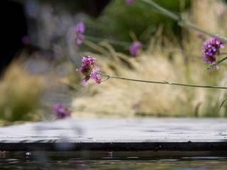 PROJEKT # 274 Moderner Garten von frei[RAUM]vision zeitgemäße Gartengestaltung am Bodensee Modern